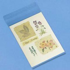Blank Greeting Card Sleeves