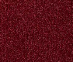 Enduring Charm Carpet
