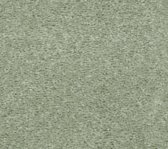 Victorious Carpet