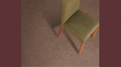 Exceptional by Resista Refresh/Evans Black Carpet