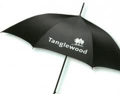 Value golf umbrella