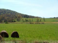 Rare Large Land Tract in VA Mountains for Sale
