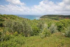 Moloaa Bay Ranch- 170 pristine acres