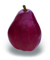 Red Anjous pear