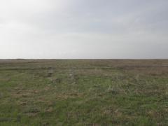 Bayfront acreage