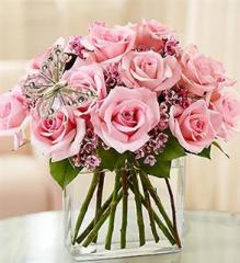 Modern Roses – One Dozen Pink