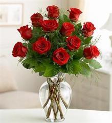 Premium Dozen Roses - Red
