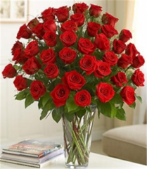 36 Bright Red Roses