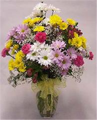 Bright Daisy Bouquet