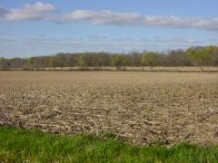 146 Acres vacant