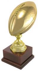 DTC Football Cup