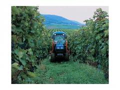 New Holland TNV-A Vineyard Tractors