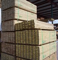 Treated Rough Lumber
