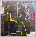 4,896 Acres - Hasting, FL