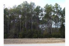 5 acres Land Property