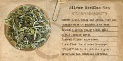 White Silver Needle