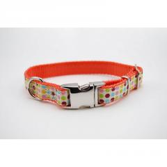 Dot Dog Collar