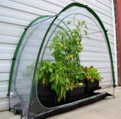 Culti- Cave Mini Greenhouse