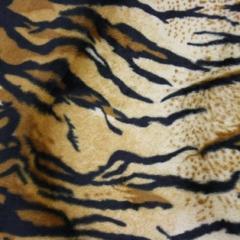 Soft Fur - Tiger