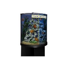 Half Moon Glass Aquarium with LED Lighting