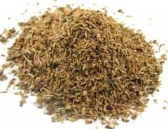 Valerian Root - Powder