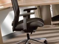 Ergonomic Chairs & Stools