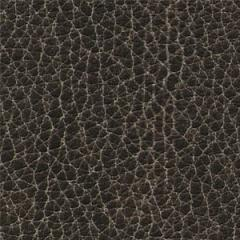 Maya Classic  Ash Upholstery Supply