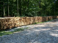 Green Firewood