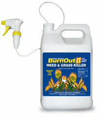 BurnOut Weed Control Blend