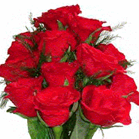 Red Roses (1 or 2 dz available)