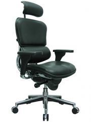 Ergohuman LE9ERG Chair