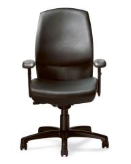 Cay ergonomic chair