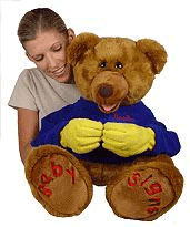 BeeBo the Baby Signs Bear