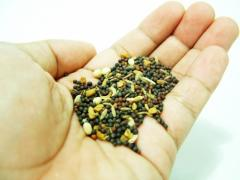 Petty's Timely Seeds For Your Garden