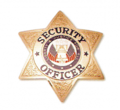 6 Point Star Badge - Breast Badge