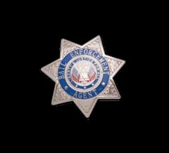 7 Point Star Badge - Bail Enforcement Agend -