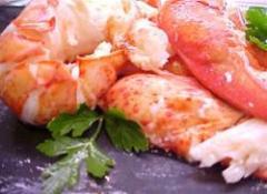 Fresh Maine Lobster Meat (TCK)