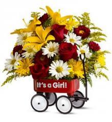 Teleflora's baby's first wagon - Girl