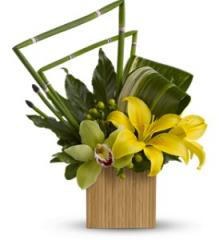 Teleflora's Bamboo Zen Bouquet