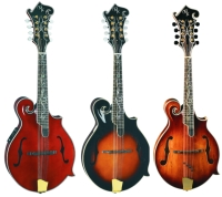 Michael Kelly Dragonfly Flame Mandolin with