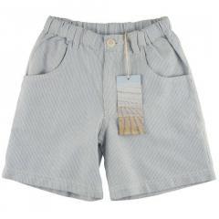 Blue Striped Print Shorts