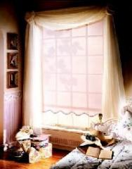 Window & Screen Shades