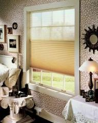 Privacy/View Pleated Shades