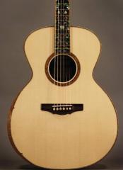 Bravado Guitar