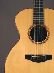 Bravado 12 Guitar