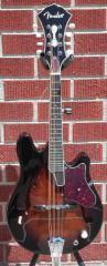 Fender® Robert Schmidt /Flogging Molly Walnut