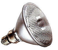 45 Watt Par38 Floodlight