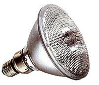 45 Watt Par38 Floodlight
