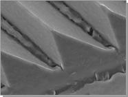 3M™ Trizact™ Abrasives