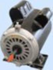 Spa pump motors